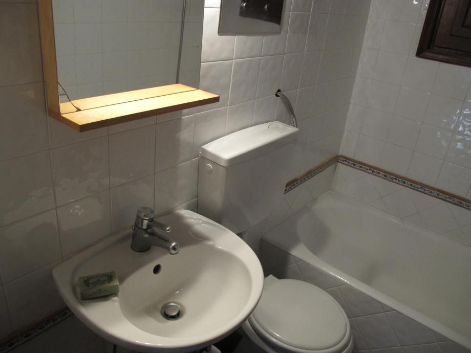 The 1st floor bathroom